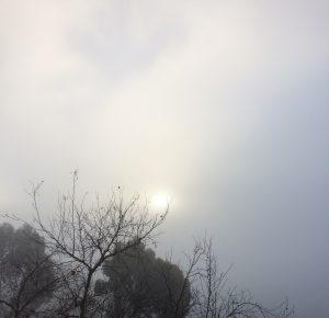 Perchance: Part X sun